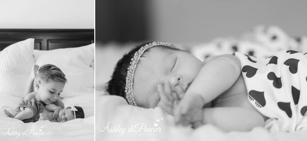 newborn portraits 3