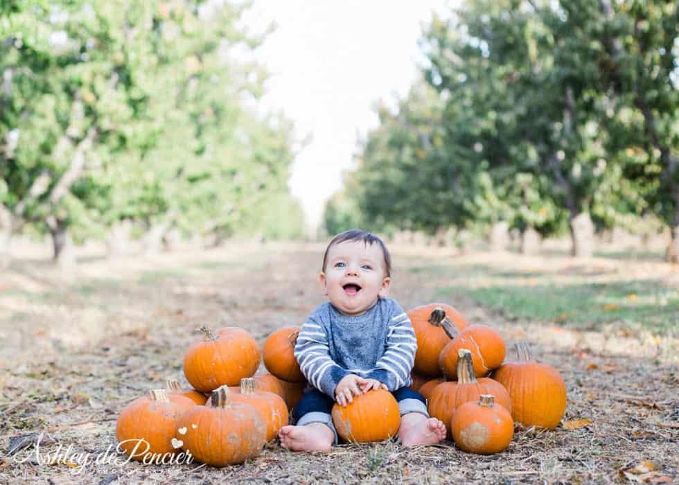 Little boy sitting with pumpkins