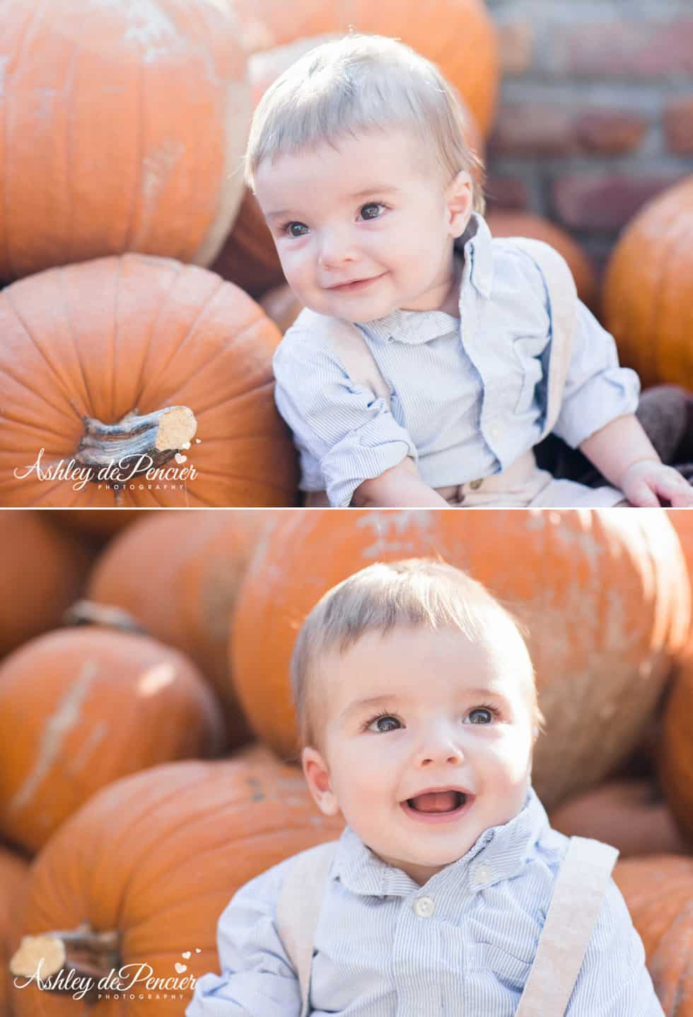 little boy sitting in a pumpkin patch