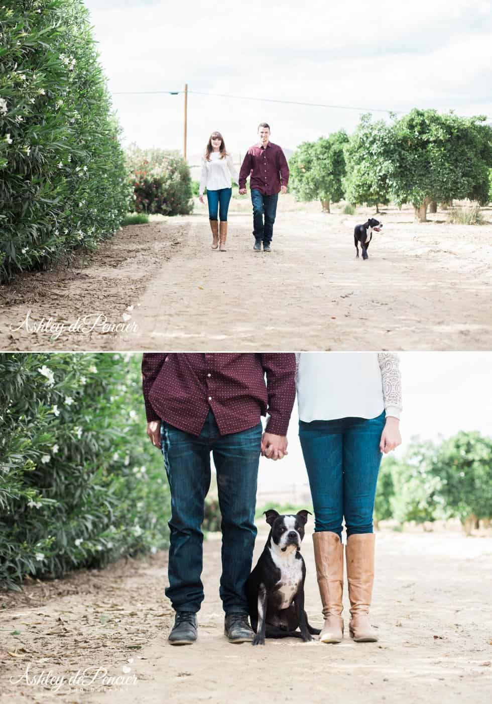 Man and woman walking with their dog