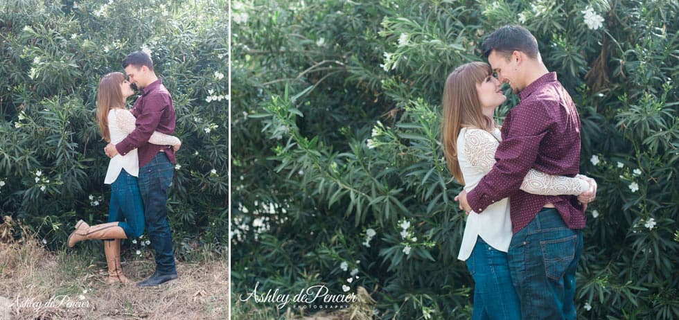 engaged couple kissing in orange grove, california